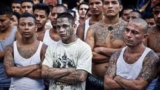 Download Lagu Gangs - MS13 - El Salvador - Mara Salvatrucha ✪ Dokumentation deutsch 2017 Mp3