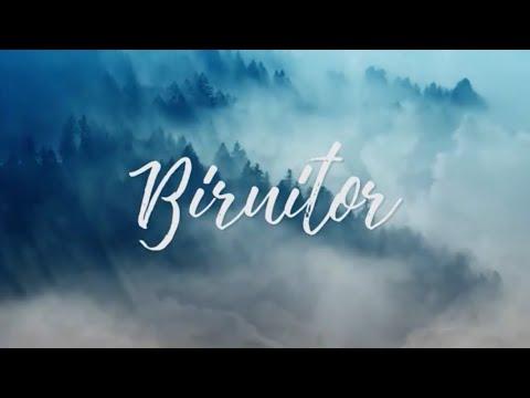 Revive – BIRUITOR