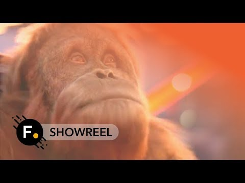 Foundry 2016 | Showreel