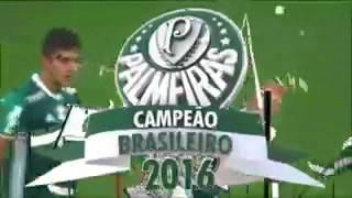 palmeiras comemora muito o titulo do brasileirão...
