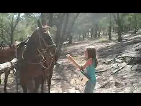 Kauai Horseback Riding
