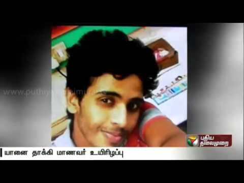 College-student-killed-by-wild-elephant-near-Gudalur