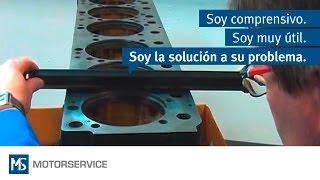 Montaje De Camisas De Cilindro - Motor Service Group