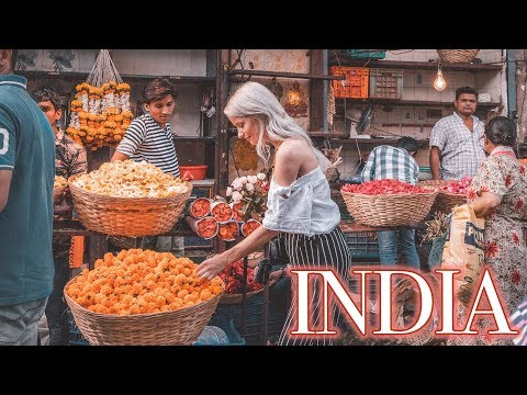 Download WE STAYED IN A PALACE IN INDIA | PART 1 | VLOG 91 HD Mp4 3GP Video and MP3