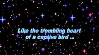 First time ever i saw your face- George Michael (lyrics)
