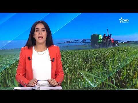Jt en français Al Aoula du 16/12/2018
