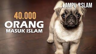 Video 40.000 Orang Masuk Islam Melihat Tingkah Anjing Ini | Kisah Nyata MP3, 3GP, MP4, WEBM, AVI, FLV Oktober 2017
