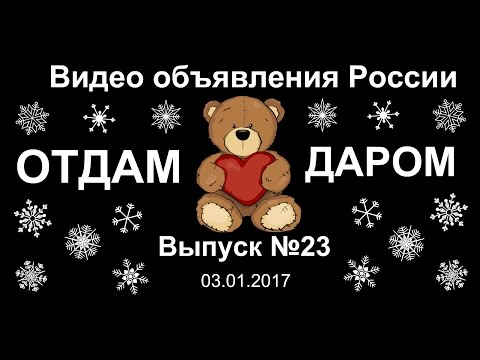 Отдам даром. Выпуск №23 - Видео объявления России