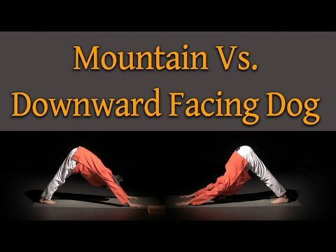 Yoga Misconception: Mountain Pose Vs Downward Facing Dog
