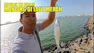 Video HIBURAN TKI JEDDAH MANCING DI LAUT MERAH. . MP3, 3GP, MP4, WEBM, AVI, FLV Januari 2019