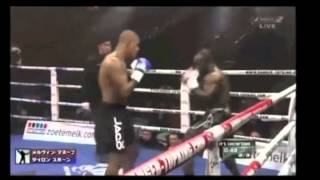 Tyrone Spong: The Technical Fighter