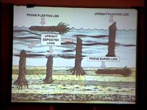 Worldwide Geologic Evidence of the Flood – Dr. Thomas Kindell