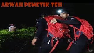 Video Misteri Arwah Pemetik Teh! | Ekspedisi Merah ANTV Eps 51 MP3, 3GP, MP4, WEBM, AVI, FLV April 2019