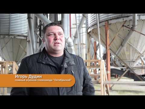 Отзыв о зерносушилках в Кировской области племзавода «Октябрьский»
