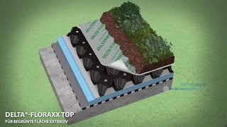 Blog / Zelená strecha