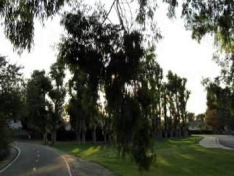 Aliso Creek Trail - Orange County, CA