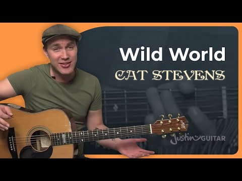 Wild World By Cat Stevens (Guitar Lesson BS-994) How To Play