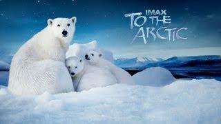 Nonton To The Arctic 2012 Imax 1 3  Exclusive  Film Subtitle Indonesia Streaming Movie Download