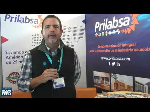 Roberto Ribas   Gerente de Prilabsa International