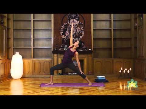 Yoga online – Limpia tu cuerpo