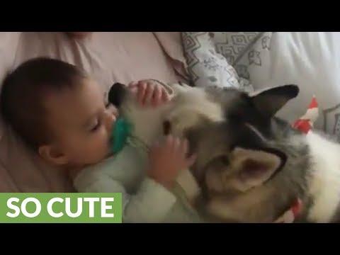 un-babysitter-particolare