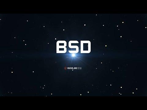 아이나비 퀀텀 - BSD