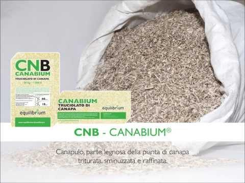 Applicazioni dei prodotti Equilibrium in canapa e calce