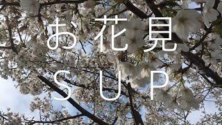 お花見SUP動画