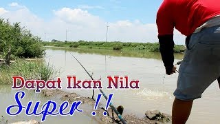 Download Video Mancing Di Sini Dapat Ikan Super !!! MP3 3GP MP4