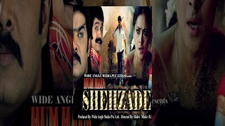 Hum Hain Shehzade (Full Movie) - Watch Free Full Length action Movie