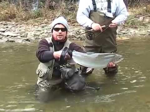 Fly Fishing for Great Lakes Steelhead and Brown Trout  www.reelactionfly.com