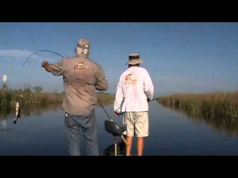 Best Frog Lure: The Original RUDE FROG: Florida Everglades Topwater Bass Fishing