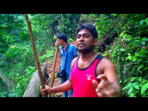 Hunting In Dense Forest Of Odisha