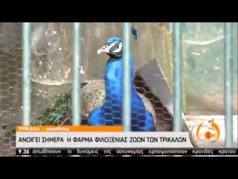 Τρίκαλα   Άνοιξε η φάρμα φιλοξενίας ζώων