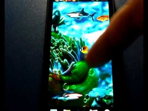 Video of Nature sea Live Wallpaper