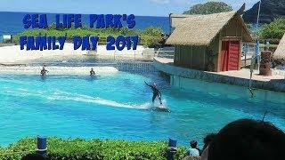 Video Sea Life Park Hawaii MP3, 3GP, MP4, WEBM, AVI, FLV Juni 2019