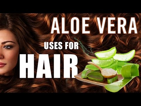 Uses-of-Aloe-Vera-for-Hair-Puthuyugam-TV