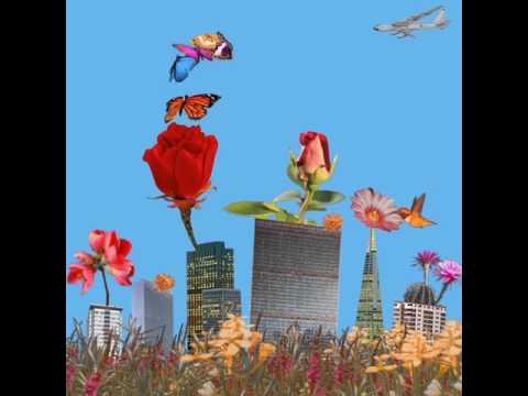 Dua Lipa - Garden (Album Visual)