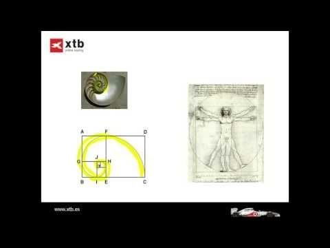 Tres maneras de utilizar Fibonacci, seminario Prop Traiding por Alexander Hick de XTB