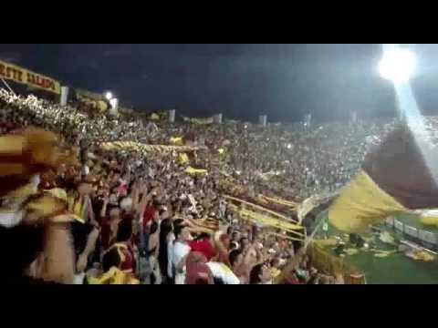 La hinchada del Deportes Tolima. Clasificación a la final - Revolución Vinotinto Sur - Tolima