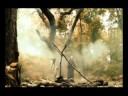 Speed Of Light - El Canto Del Loco