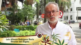 Cali Bonita, un reto del Dagma y Corfecali para la 59 Feria de la ciudad