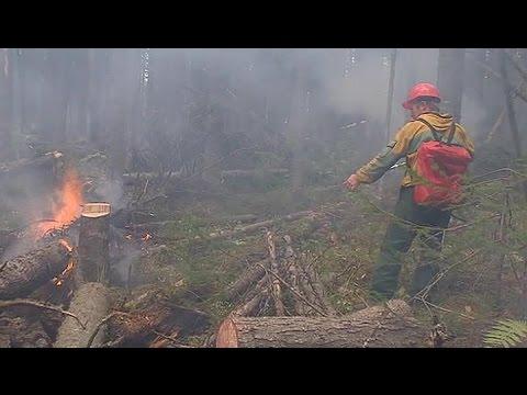 Смотреть онлайн: Страшные пожары в Бурятии