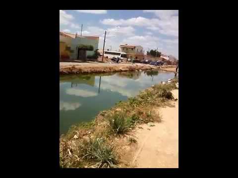 Situação e descaso do bairro Dom Avelar em Petrolina PE