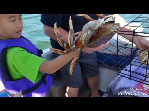 Đi câu cua ở mỹ ( crabbing) p 1 - Thời lượng: 17:14.