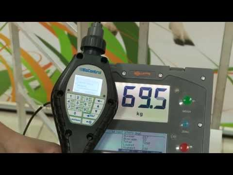 Видеоинструкция по настройке весов Gallagher