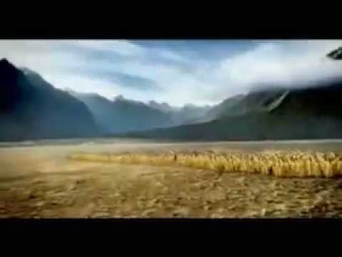the big beer ad - Charlton Draught Commercial
