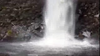 Hawes United Kingdom  city photo : Hardraw Force Waterfall, near Hawes, Yorkshire, England