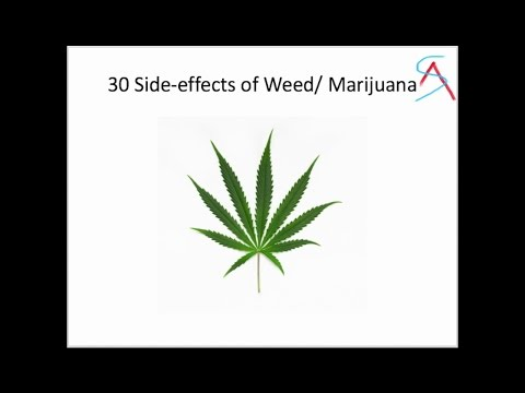 an analysis of the marijuana effects