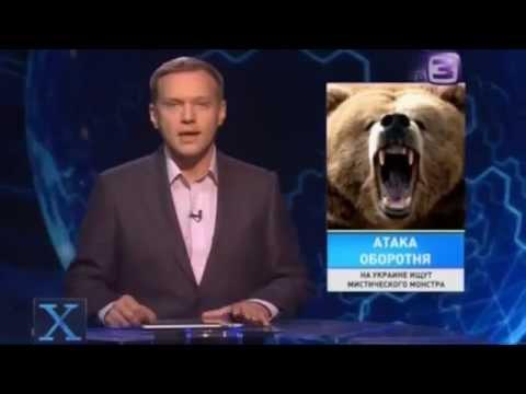 Х-версии:В лесах Закарпатья найдено логово Медведя оборотня. - DomaVideo.Ru